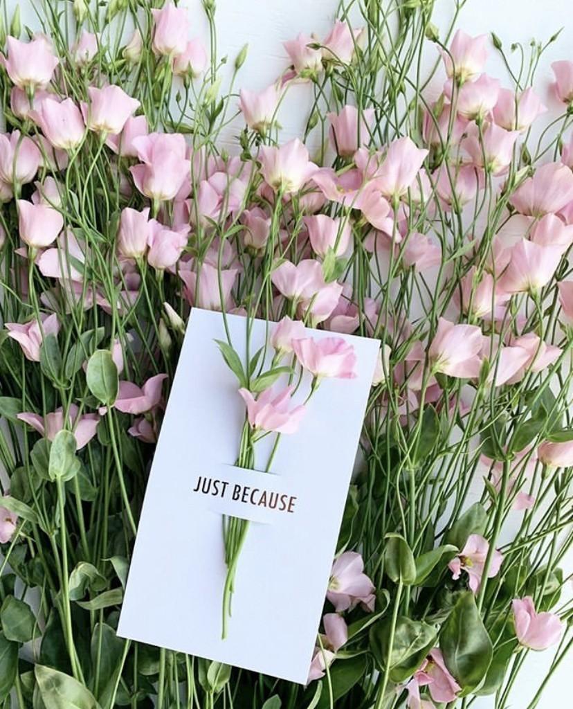 Online bloemengroothandel Bloomer