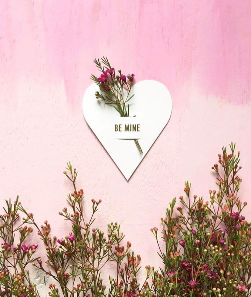 Bloomer online bloemengroothandel