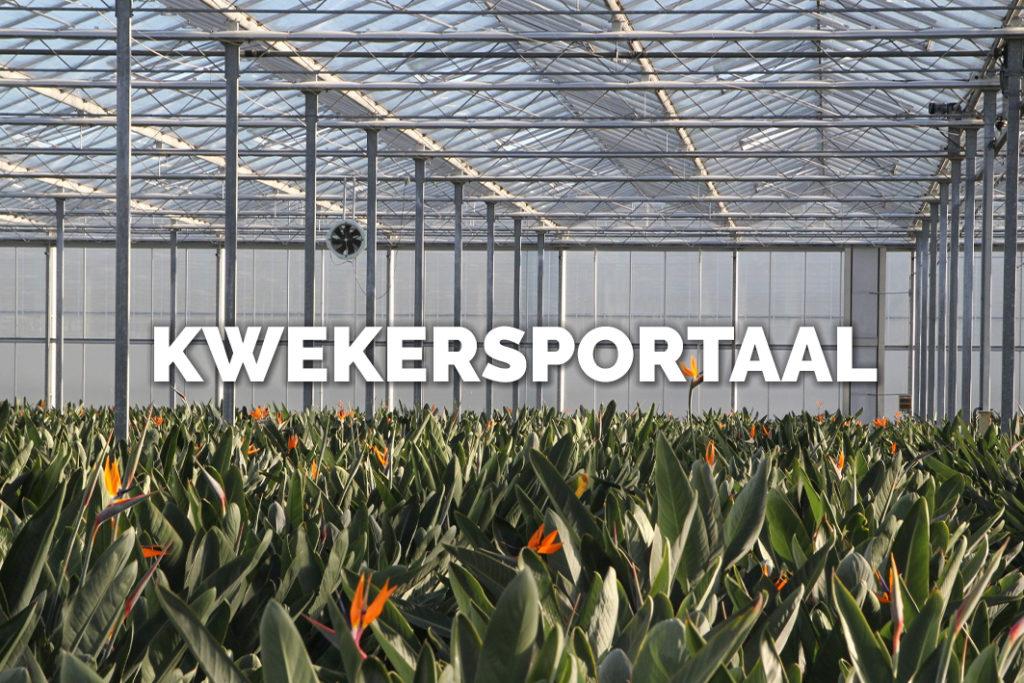 Ga naar Bloomer's kwekersportaal!